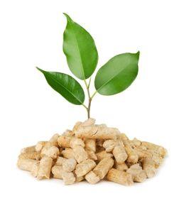 hout pellets milieuvriendelijk